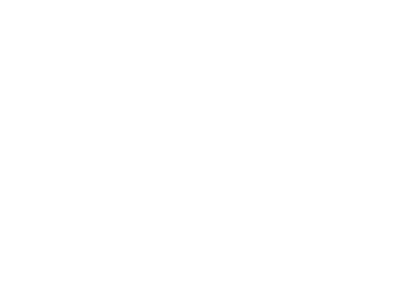 CLT International Logo